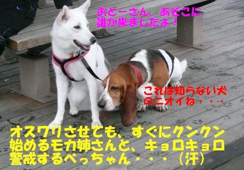 f0121712_1493575.jpg