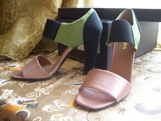 ピンクと緑と黒の靴_a0098948_16411391.jpg