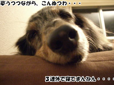 d0020869_14163972.jpg