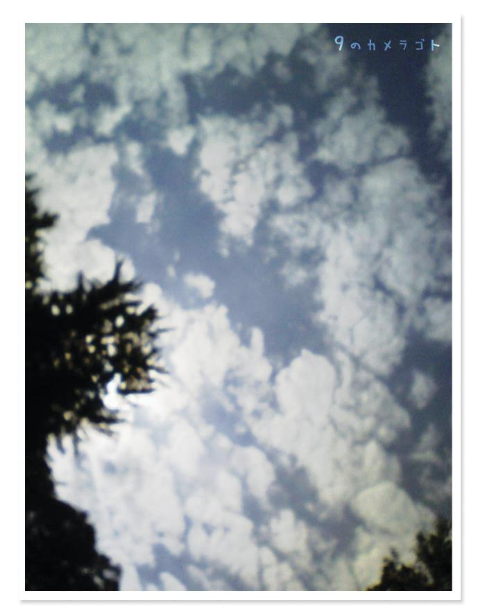 f0157679_163274.jpg