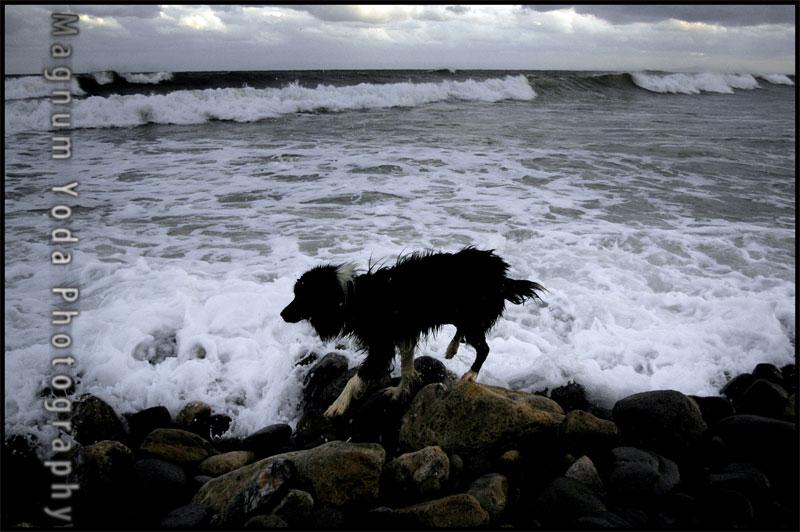 波打ち際は危険です。_b0086920_1242473.jpg