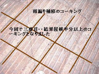 f0031037_16543661.jpg