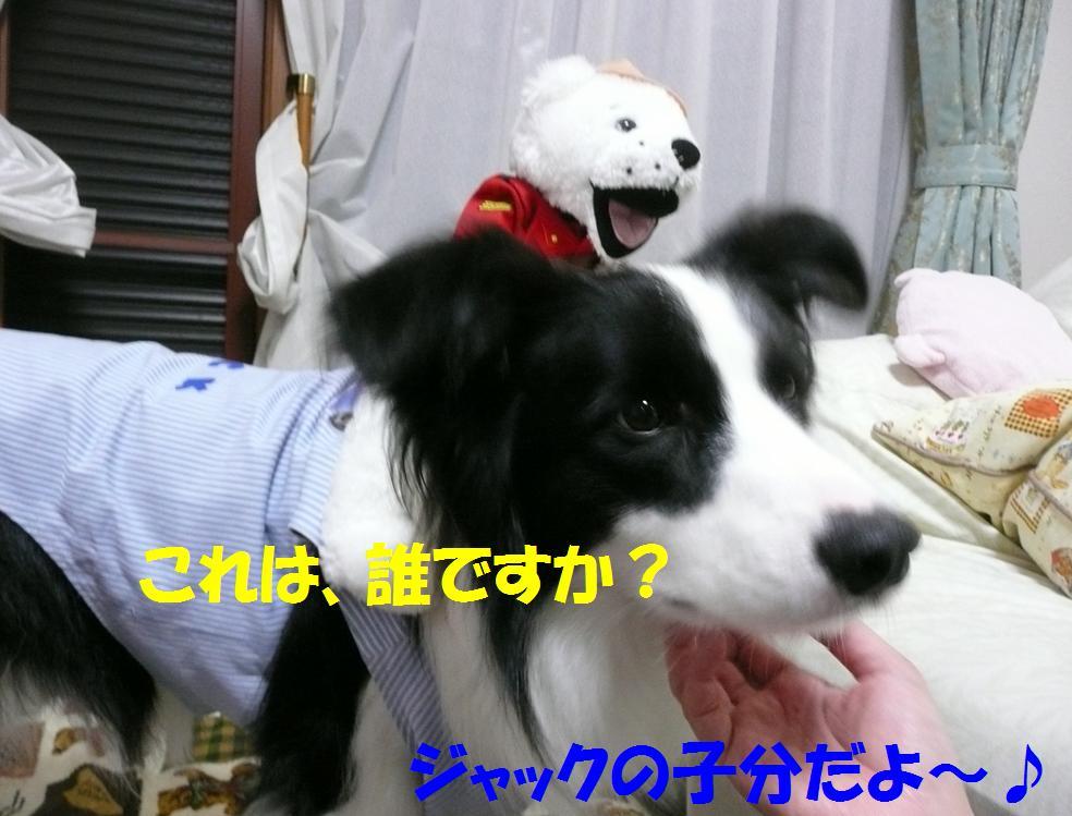 c0147241_2254534.jpg