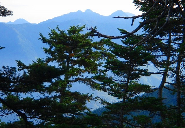 <2008年10月4~5日>南アルプス深南部の秘峰「池口岳」_c0119160_74832.jpg