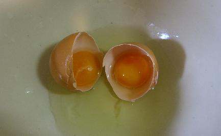 凍った卵_e0077899_8272334.jpg