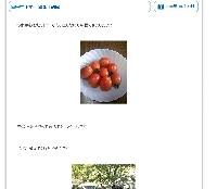 e0020210_21334072.jpg