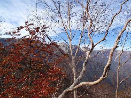 秋晴れの唐松岳_c0177814_1274944.jpg