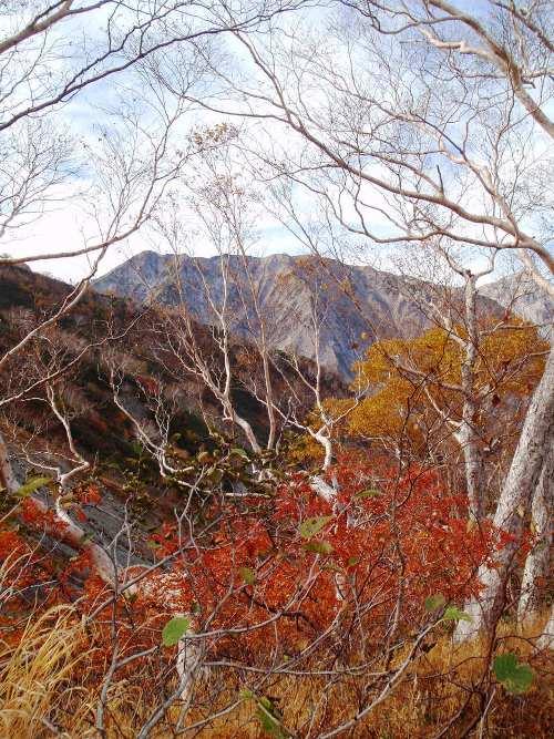 秋晴れの唐松岳_c0177814_12810100.jpg
