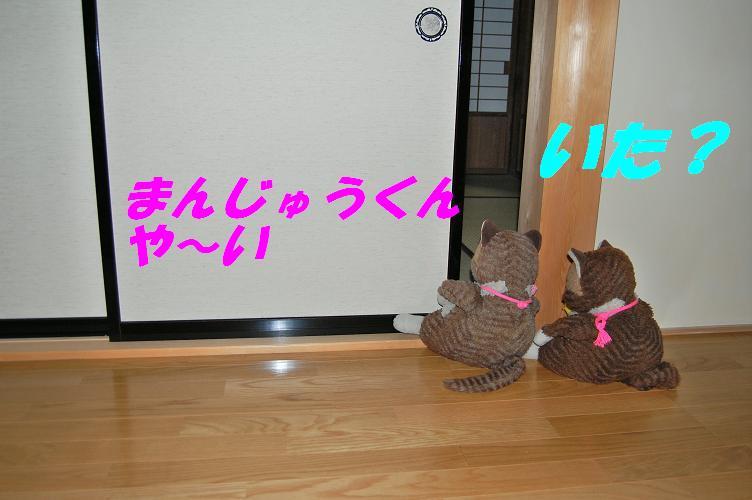 b0059978_2133669.jpg