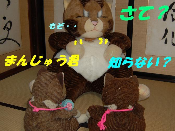 b0059978_21492513.jpg