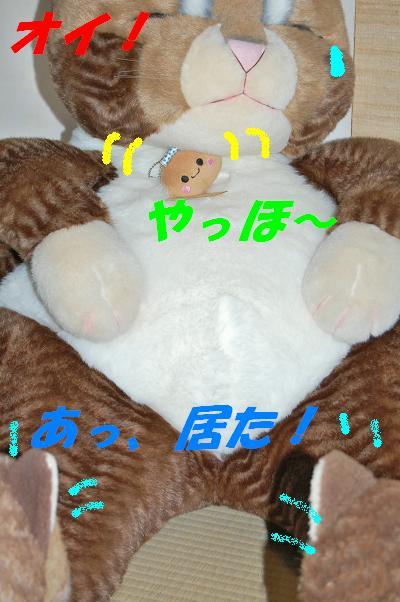 b0059978_21573170.jpg