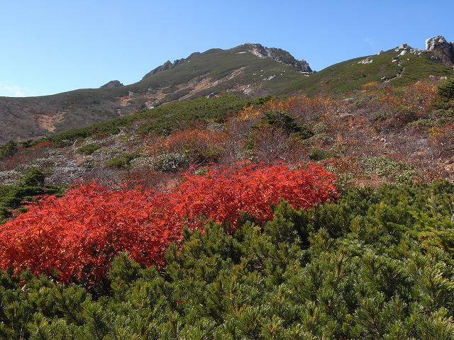10月13日、空木岳_f0138096_17342982.jpg