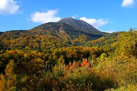 女の神展望台から望む八ヶ岳と、山麓の紅葉_d0102327_18445671.jpg