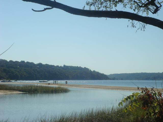 海辺を散歩、撮影を楽しみながら、_d0100880_5451540.jpg