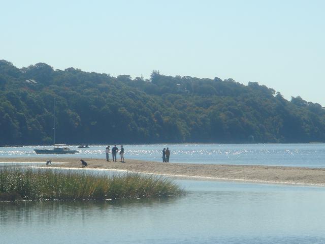 海辺を散歩、撮影を楽しみながら、_d0100880_5453779.jpg