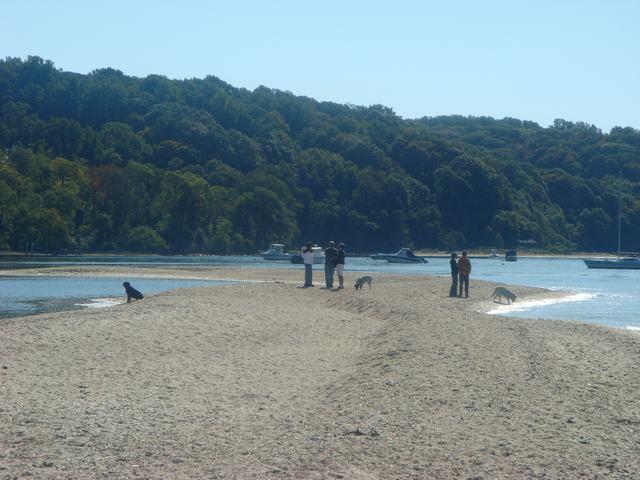 海辺を散歩、撮影を楽しみながら、_d0100880_5455750.jpg