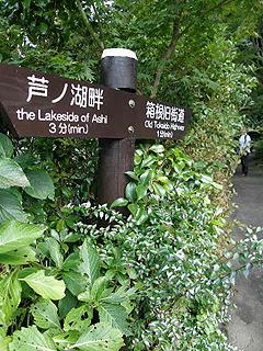 箱根_c0025217_1142156.jpg