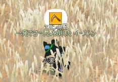 f0048418_17135037.jpg