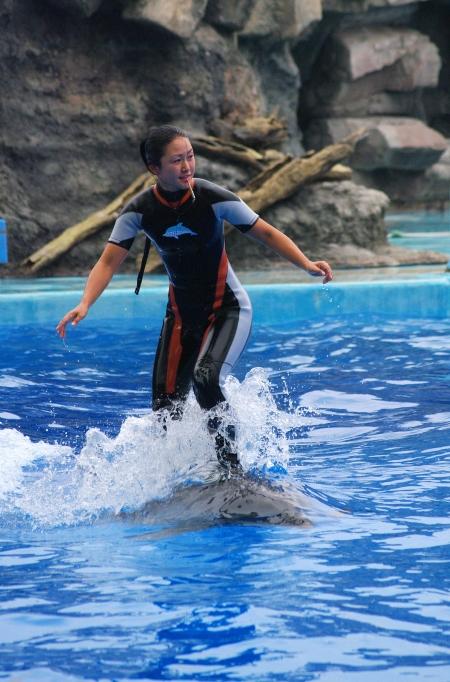 イルカに乗った少女~♪ 名古屋港水族館_d0145934_20425517.jpg