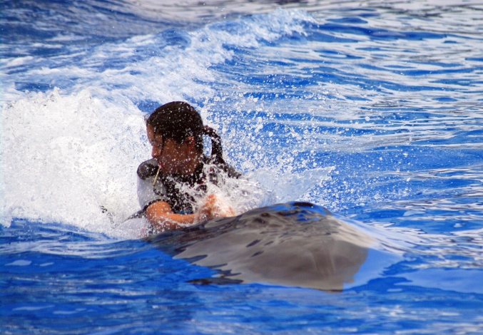 イルカに乗った少女~♪ 名古屋港水族館_d0145934_2043837.jpg