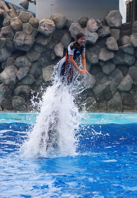 イルカに乗った少女~♪ 名古屋港水族館_d0145934_2044042.jpg