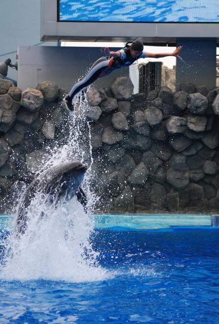 イルカに乗った少女~♪ 名古屋港水族館_d0145934_20441333.jpg