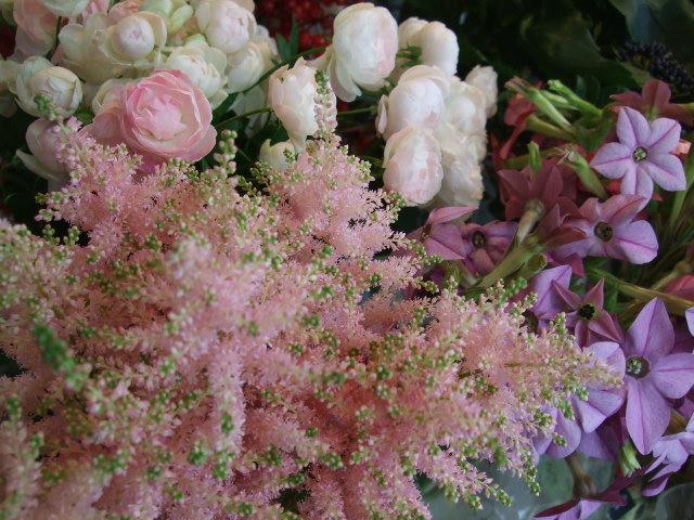 オークリーフ(透明感のある花たち)_f0049672_1229493.jpg