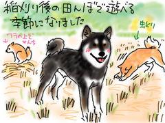 b0057675_20122062.jpg