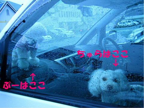 b0104592_18345281.jpg