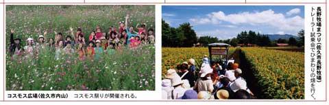 川柳カレンダー写真コンテスト作品募集_f0105218_1642824.jpg