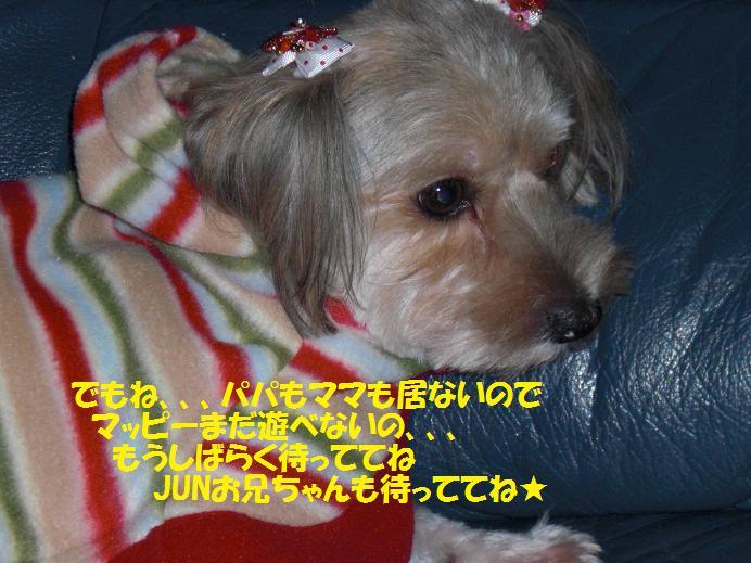 f0114128_22185783.jpg