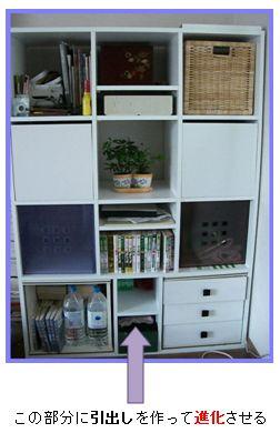 DIYで進化する収納棚 ⑤ カーテン生地からカバンに!②_a0084343_169261.jpg