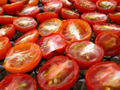 庭のミニトマトで、セミドライトマトを作ってみる_c0110869_2211619.jpg
