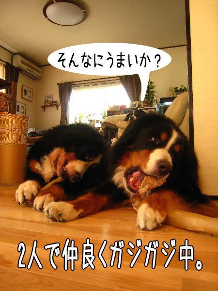f0187974_028513.jpg