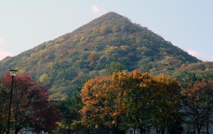 秋色の点数_f0160407_4493489.jpg