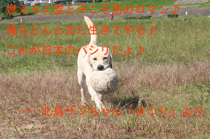 f0191413_1813598.jpg