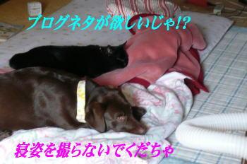 d0013645_22175060.jpg