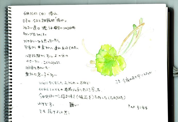f0183663_8495696.jpg