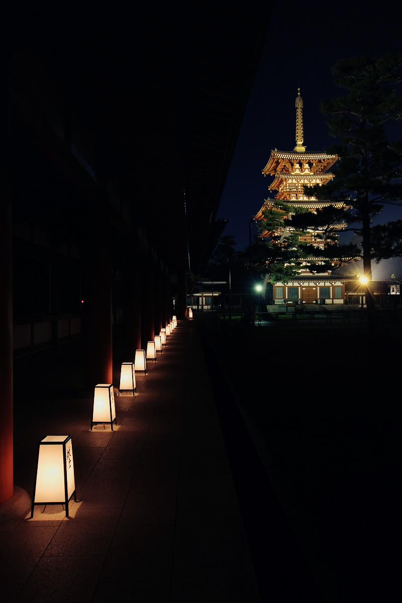 奈良 薬師寺万燈会  2_f0021869_121644.jpg