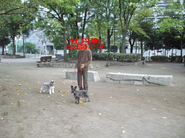 c0138198_15185037.jpg