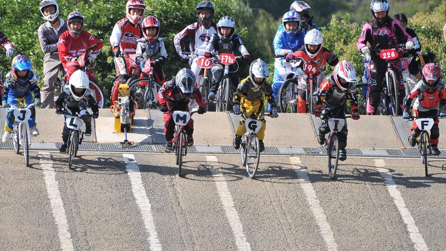 2008JBMXF西日本BMX選手権大会IN大阪VOL 6:年齢別クラス決勝その1_b0065730_1939279.jpg