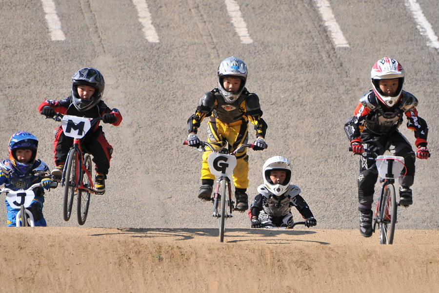 2008JBMXF西日本BMX選手権大会IN大阪VOL 6:年齢別クラス決勝その1_b0065730_19393847.jpg