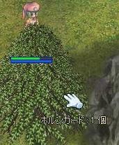 f0158738_2262172.jpg