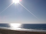 LA滞在2日目♪_e0042839_16282632.jpg