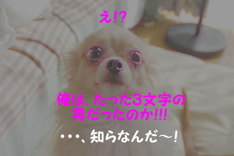 b0112758_0505419.jpg