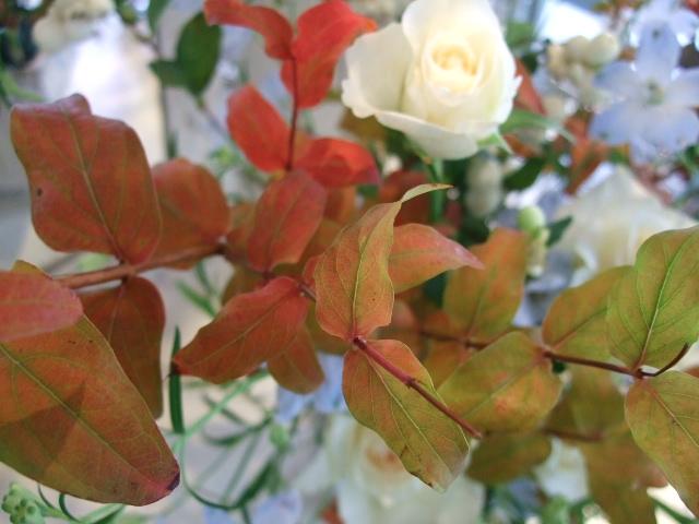オークリーフ花の教室(佐竹さんの作品)_f0049672_15303134.jpg