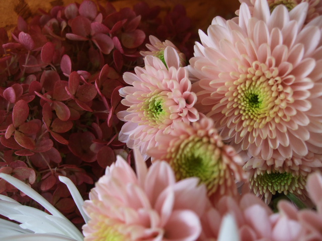 オークリーフ(秋色ミナズキとアナスタシアの花束)_f0049672_168177.jpg