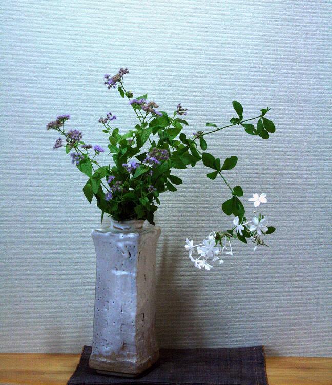 花のたましい         金子みすずを想う_a0107574_8385614.jpg