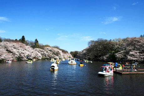 http://pds.exblog.jp/pds/1/200810/19/00/d0020400_2114834.jpg