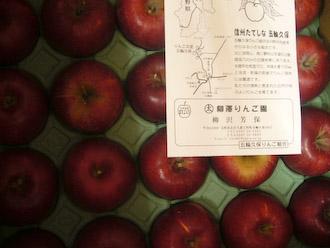 リンゴパイの準備_d0066821_18104977.jpg